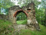 Zamek Nowy Dwór