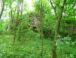 Lipienek Castle ruin