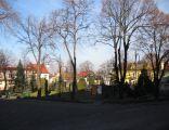 Krzanowice - Rynek