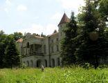 Pałac Ostaszewskich we Wzdowie