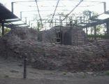 Palatium na Ostrowiu Lednickim
