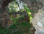 Zamek w Fałkowie