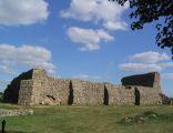 Ruiny zamku w Wenecji w Polsce