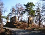 Ruiny zamku górnego w Rożnowie