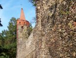 Fragment średniowiecznych murów miejskich w Paczkowie
