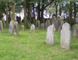 Cmentarz żydowski w Wielowsi