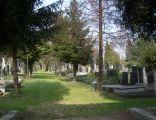 Aleja Zasłużonych na cmentarzu żydowskim w Bielsku-Białej