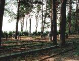 Cmentarz w Kotowicach z I wojny światowej