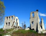 Ruiny zamku w Mokrsku Górnym