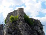 Ruiny zamku w Ryczowie