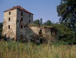 Ciepłowody, ruiny zamku