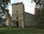Drzewica, ruiny zamku