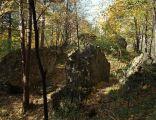 Ruiny zamku Myślenicach