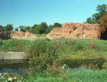 Ruiny zamku Sędziwoja w Szubinie