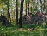 Zamek w Warcie Bolesławieckiej