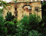 Zamek w Chocianowcu