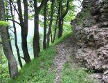 Ruiny Zamku Rogowiec - wieś Grzmiąca, gmina Głuszyca