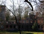 Ruiny pałacu w Dolsku